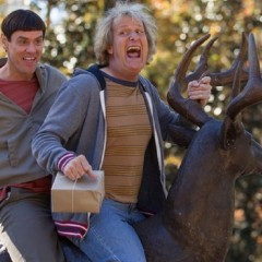 Dumb and Dumber posts big numbers at US box office