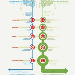 Top 7 TED Talks to Develop Your Growth Mindset and Double Your Productivity